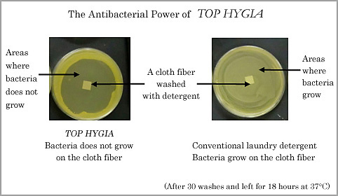 The Antibacterial Power of TOP HYGIA